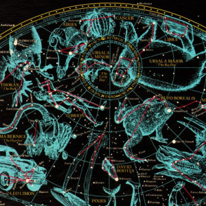 avatar van Tony